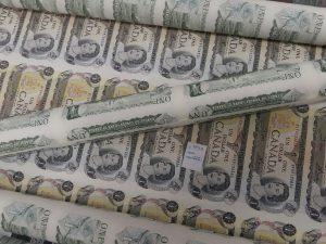 Paper bills (banknotes)