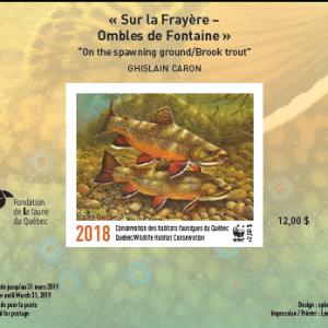 2018 Sur la Frayère – Ombles de Fontaine de Ghislain Caron