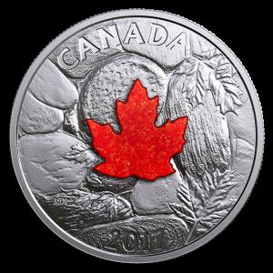 2017 Pièce de 20$ en argent fin – Majestueuses feuilles d'érable avec pierre drusique