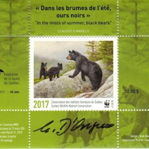 2017 In the mists of summer, black bears by Claudio D'Angelo