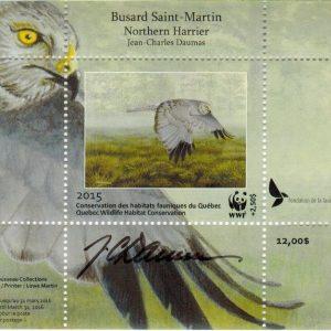 2015 Busard Saint-Martin par Jean-Charles Daumas